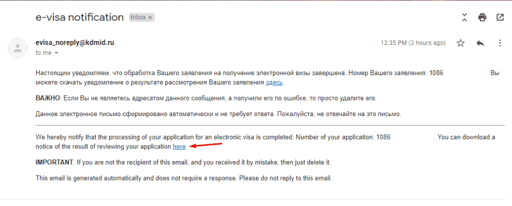 Russian e-visa successful application