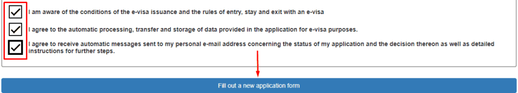 Russian e-visa application form