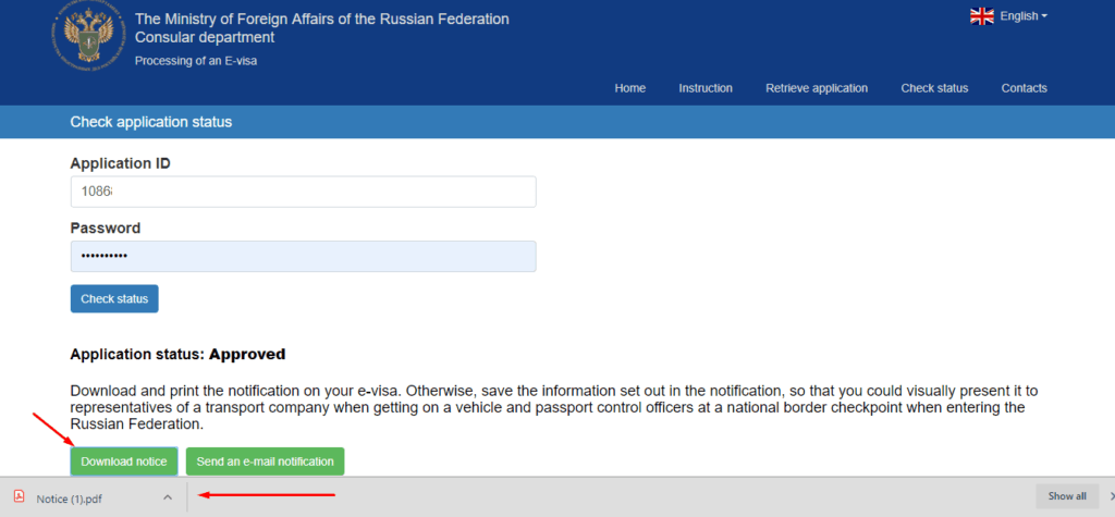Russian e-visa approved